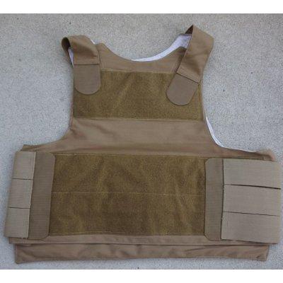 画像1: 米軍FSBEII PACAソフトアーマーキャリアCB(コヨーテブラウン)新品