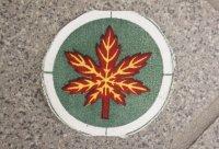 パキスタン軍 陸軍第12歩兵師団部隊章 新品